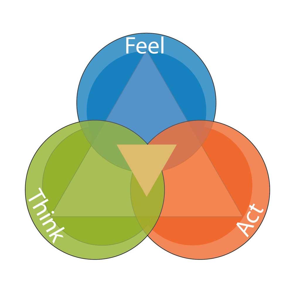 Social Emotional Intelligence Is >> Emotional Intelligence Executive Functioning Social Skills